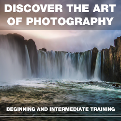 Discover the Art of Photography